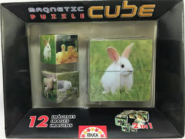 Puzzle cubos Magnéticos I Educa