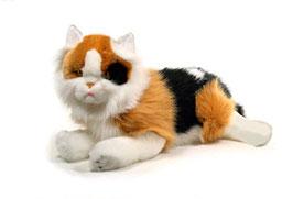Gato Tumbado  |  Menal