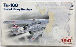 TU-160  ICM