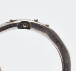 gehämmerter Ring mit Gold 170310