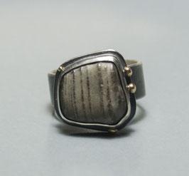 ring meer