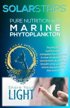 SolarStrips (orale inname geconcentreerde fytoplankton) Terug verkrijgbaar! Wachtlijst. Reservatie noodzakelijk!