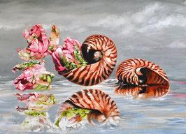 """Papageientulpen mit Nautilus"""