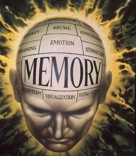 TALLER MEMORIA (Sólo pago con tarjeta o paypal, NO TRANSFERENCIAS)