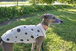 イタグレ服 襟付き水玉ノースリーブ ベージュxベージュ          Sleeveless with collar for Italian Grey hound and Others