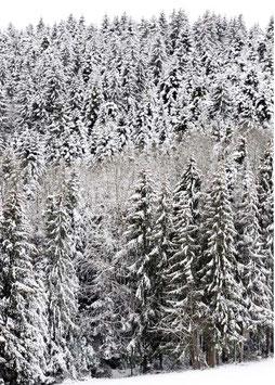Postkarte Schnee hoch dunkel