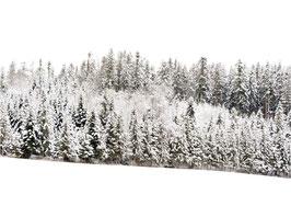 Postkarte Schnee quer weiss