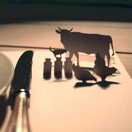 6er Tischset Bauernhoftiere 075 in Cellophanhülle