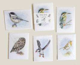 British Birds card set (5 cards)