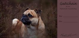 Wertgutschein - Hundeshooting - Desing 01