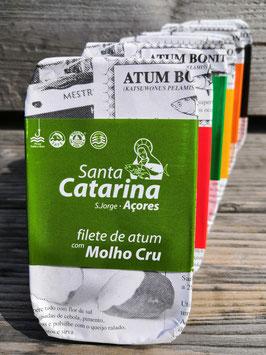 Thunfisch-Filets in Olivenöl mit mediterraner Soße