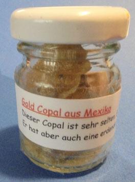 Gold-Copal aus Mexiko     15 Gramm