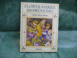 Flower Fairies Buch Frühling