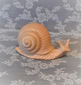 Keramikschnecke (Größe 4) in terracotta