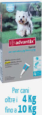 ADVANTIX CANE DA 4 KG A 10 KG - 4 PIPETTE