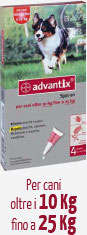 ADVANTIX CANE DA 10 KG A 25 KG - 4 PIPETTE