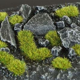Gamers Grass Small Moss 2mm Basing Material