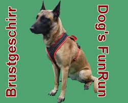 Dogs funrun (für alle Rassen)