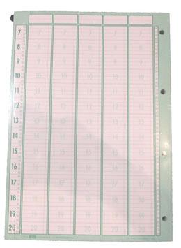 Planungseinlagen, 5 Spalten/ Seite, DIN A4 ; 100St.