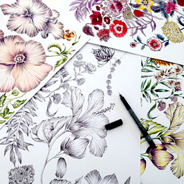 WORKSHOP FLORALE ILLUSTRATION