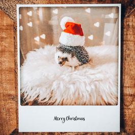 "Post Card ""Merry Christmas"""