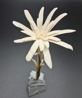 Edelweiss-Blume (Handgeschnitzt) mit Steinsockel