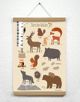 Tiere des Waldes Poster + Posterleiste A3 Eiche