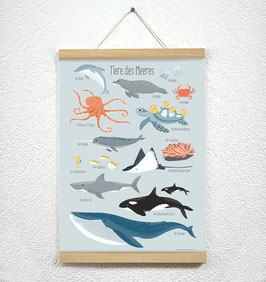 Tiere des Meeres Poster + Posterleiste A3 Eiche