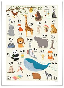 ABC Poster Tieralphabet 50x70 cm