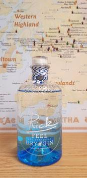 Rick Mediterranean Gin 41% vol. 0,50l