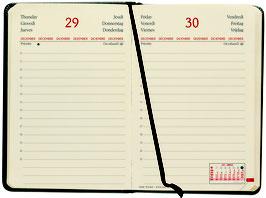 Quo Vadis Kalender 2020 Daily Pocket - 8,8x13cm