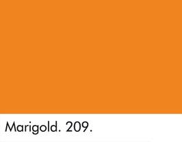 Marigold - 209