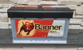 Banner Power Bull PROfessional P84 40