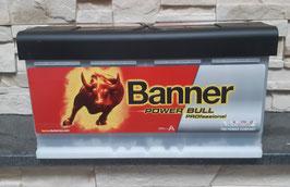 Banner Power Bull PROfessional P10040