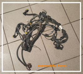 Fiat Bravo 1.2 16V Kabelbaum/ Kabelstrang 46742104