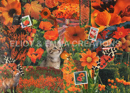 ST - 282 - FLEURS ORANGES - ORANGE FLOWERS