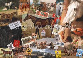 ST - 415 - CHEVAUX - HORSES
