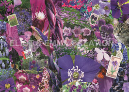 ST - 281 - FLEURS VIOLETTES - PURPLE FLOWERS