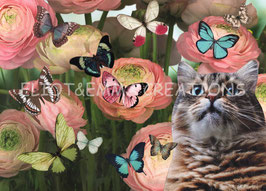ST - 470 - CHAT et PIVOINES - CAT and PEONIES