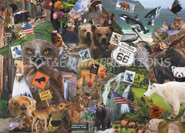 ST - 295 - LA FAUNE AMERICAINE - AMERICAN ANIMALS