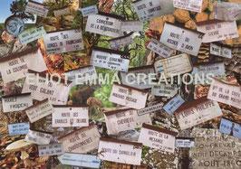 ST - 107 - FONTAINEBLEAU - PLAQUES DES SENTIERS FORESTIERS - FONTAINEBLEAU  FOREST TRAIL PLATES