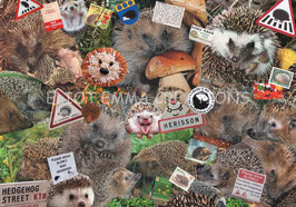 ST - 396 - HERISSONS - HEDGEHOGS