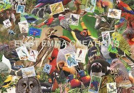 ST - 169 - LES OISEAUX DU MONDE - BIRDS OF THE WORLD