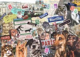 ST - 484 - PARIS et LES BETES - PARIS and ANIMALS