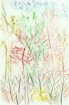 Kartenset «floradies»