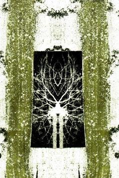 Kartenset «spiegelungen»