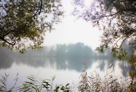 "Martin J. Eder - ""Misty Lake"""