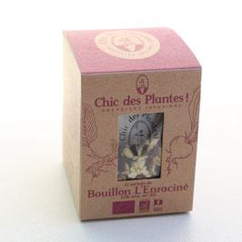 L'Enraciné by Chic des Plantes !