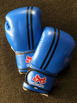 Leather Boxing Gloves - Blue