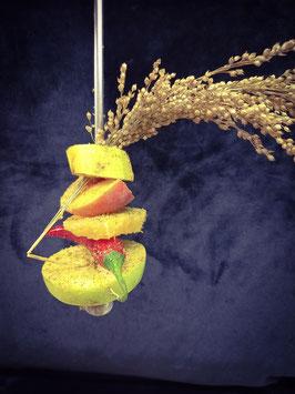 Fruchtspieß